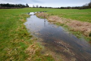 Read more about the article Thames Head to Lyd Well