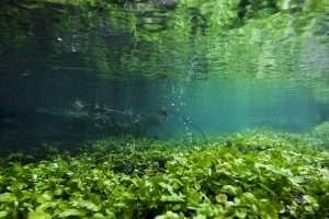 Underwater near Kemble